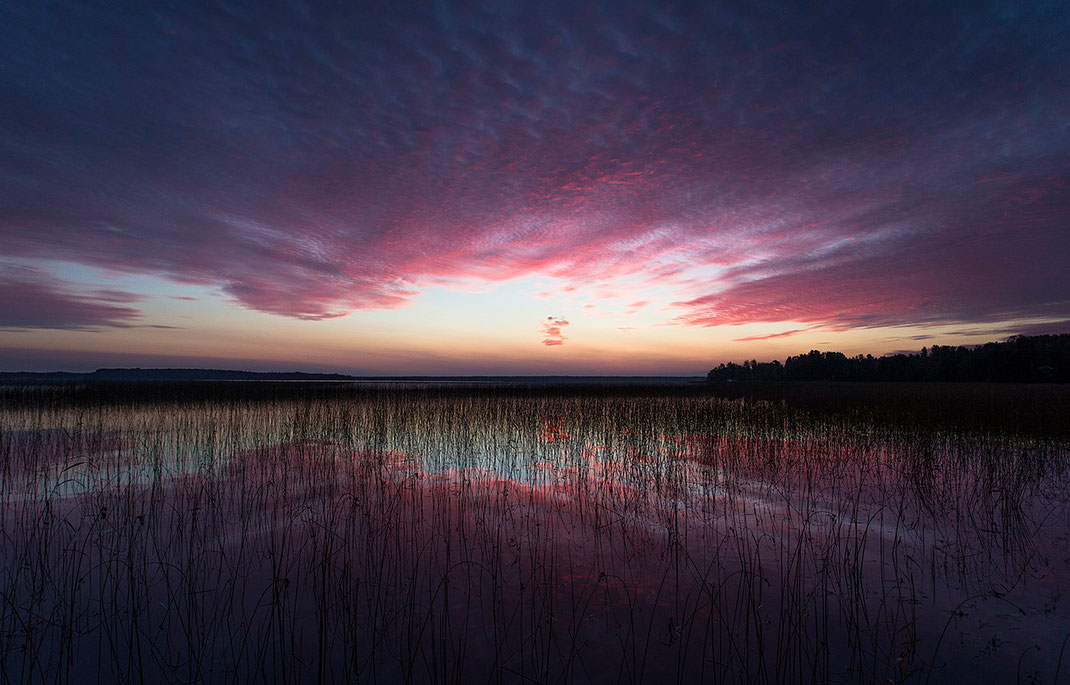Deep Purple colored sunrise with cloud reflections at a lake in Gaevle, Sweden, Scandinavia