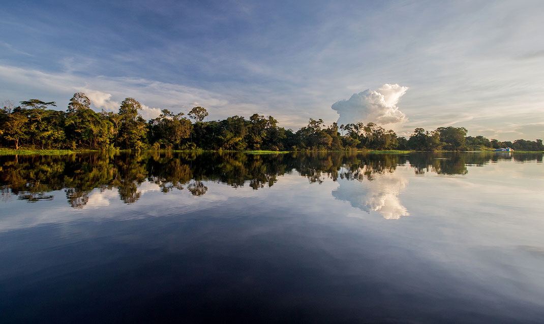 Amazon River with rainforest and jungle trees, thunderstorm clouds reflecting, Manaus, Brazil, 1280x763px