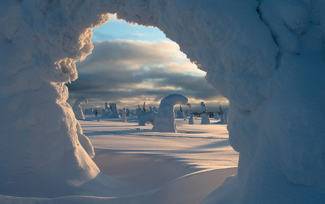 A frozen, bended tree creates a natural window in the Riisitunturin National Park, Posio, Lapland, Finland, Scandinavia