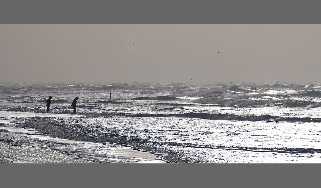 Two people at a stormy beach with high waves and rough water and seabirds, Texel Island, Holland, Netherlands, 1280x750px