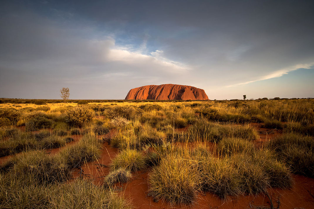 Uluru, Ayers Rock standing in the Spinifex bushland of the Northern Territory Outback in Australia, 1280x853px