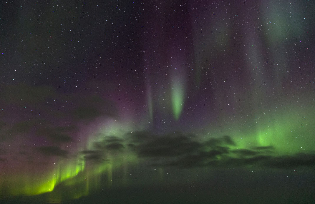 Beautiful Aurora Borealis with purple and green color beams - curtains on Snæfellsnes, Iceland