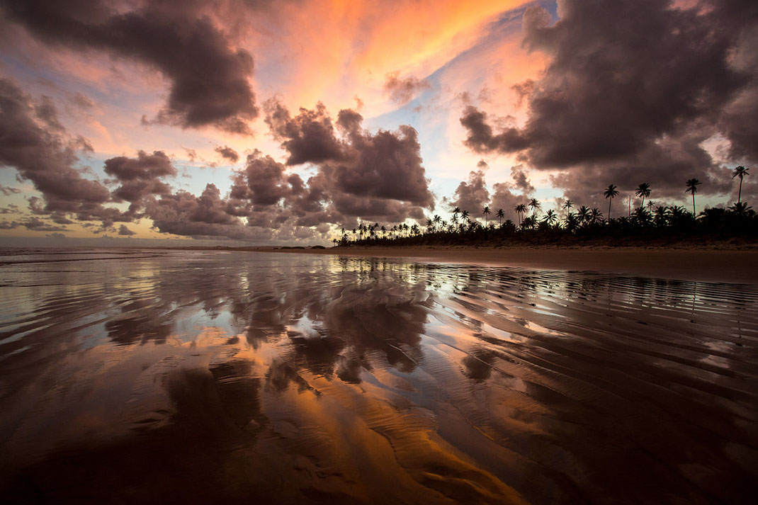 Beautiful sunset with color reflections on the beach and palm trees, Maceio, Brazil, 1280x853px