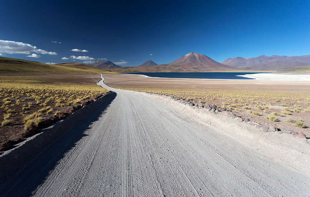 Road to Laguna Miscanti in Andes desert blue sky with yellow desert gras and Vulcans, Atacama Desert, Chile, 1280x814px