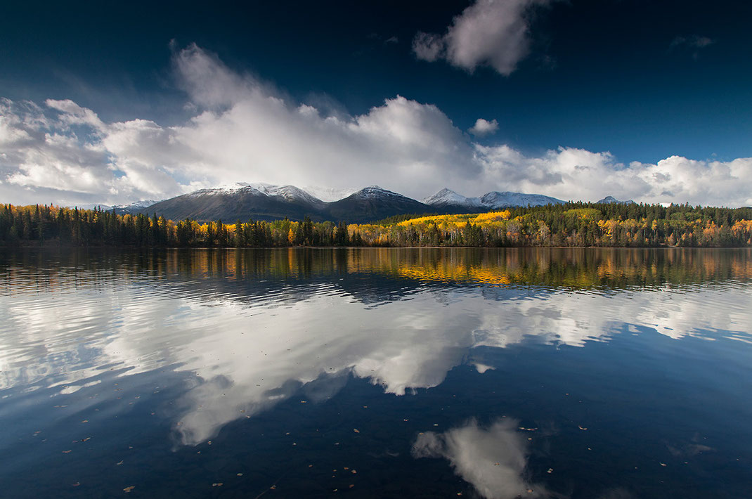 Patricia Lake with yellow larch tree leaves and snowy mountains, Japer National Park, Alberta, Canada, 1280x849px