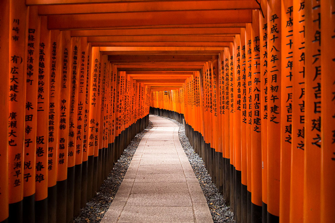 Endless row of red Torii arches, Fushimi Inari Taisha shrine, temple, Kyoto, Japan 1280x853px