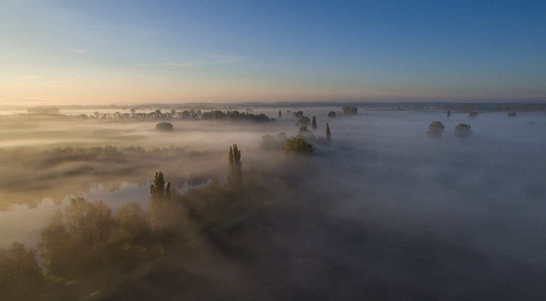 Beautiful Sunrise with Fog and Trees at the Leeheim Lakes, Dji Phantom, Drone, Germany 1280x705px