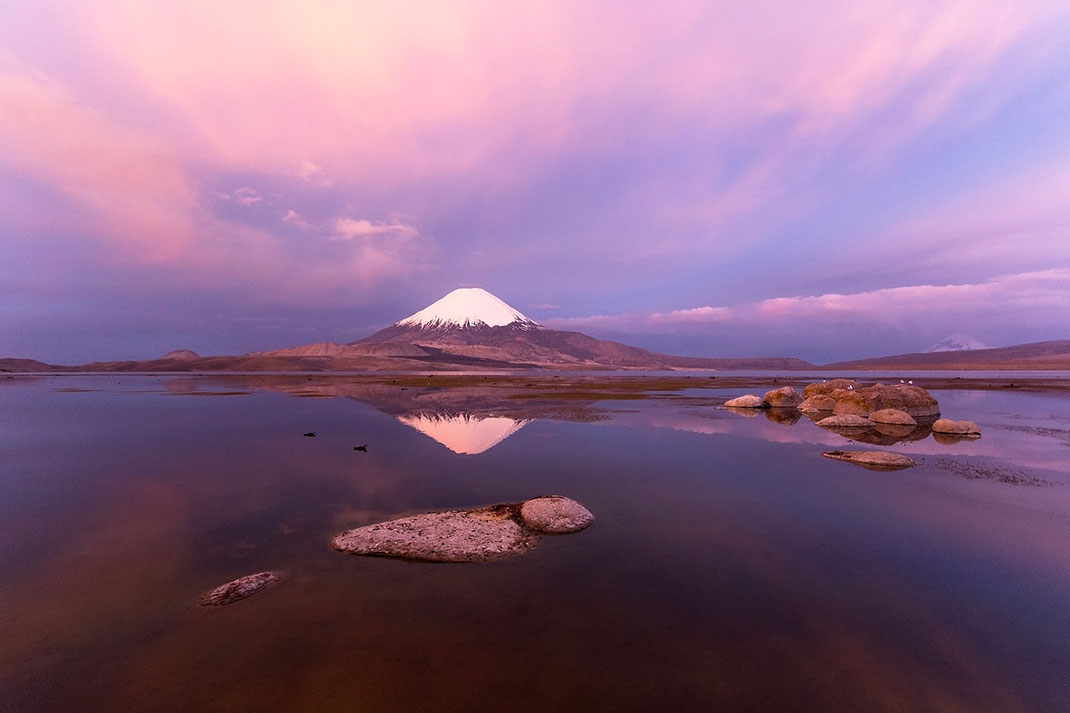 Purple sunset light at vulcan Parinacota, National Parque Lauca, Altiplano, Andes, Chile, 1280x853px
