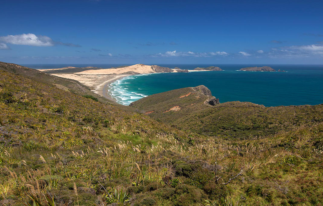 Great Exhibition Bay Cape Reinga with beautiful Pacific beaches, Northern Island, New Zealand,  1280x819px