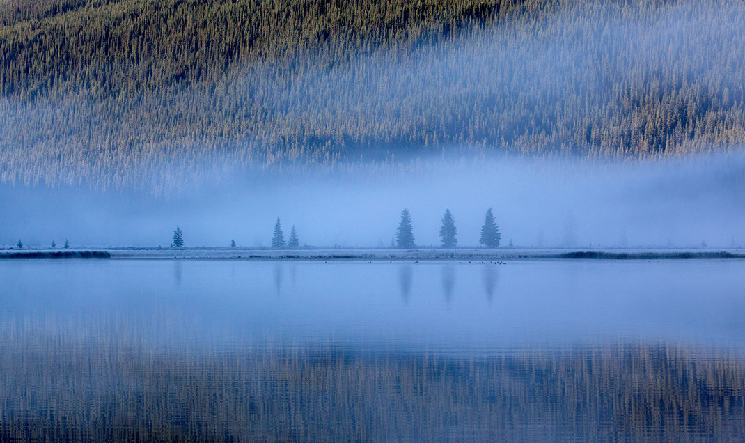 Cold blue morning at Waterfowl Lake, fog and tree reflections, Banff National Park, Alberta, Canada, 1280x761px