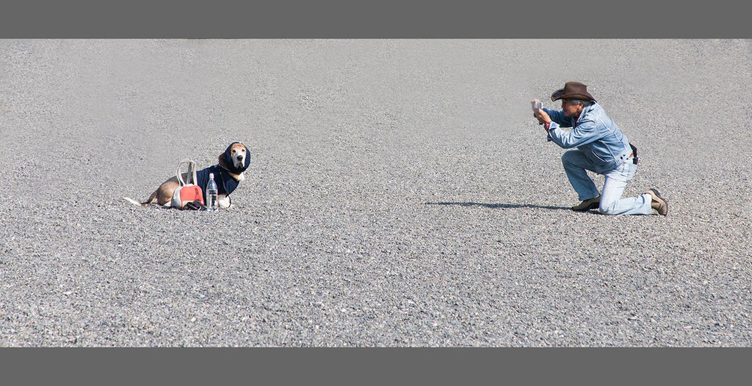 Funny picture with man and Cowboy hat and dog taking pictures at the Imperial Palace, Tokyo, Japan, 1280x658px