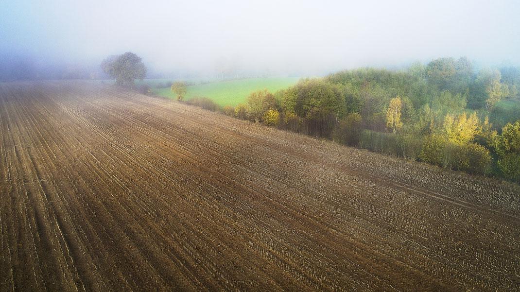 Luftaufnahme von Stoppelacker mit Knicklandschaft, Nähe Hohe Leuchte, Grönwohld, Stormarn von Jürgen Müller