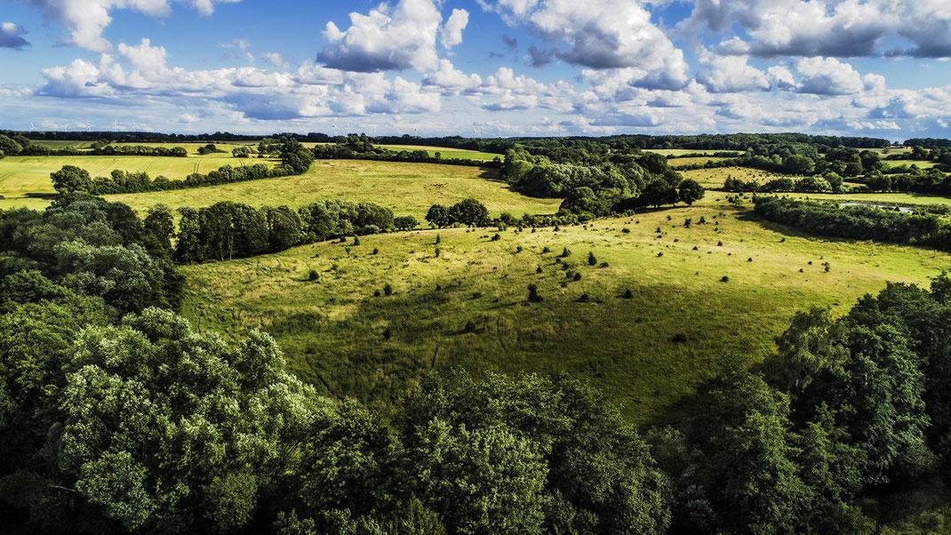 Luftaufnahme einer Wilde Weide im Stiftungsland Barnitz, Stormarn von Jürgen Müller