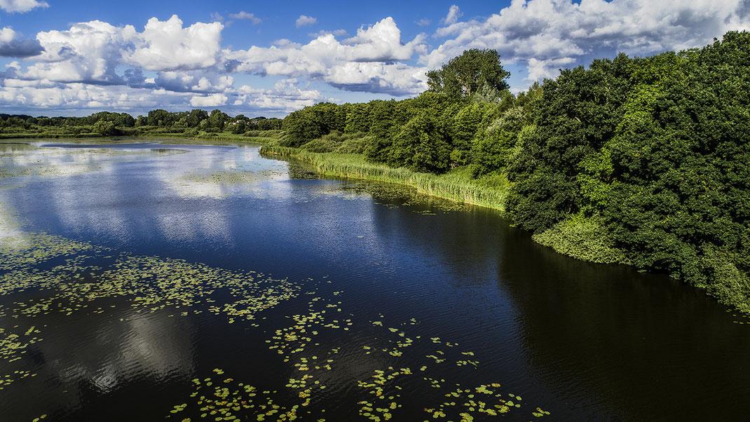 Foto vom Naturschutzgebiet oberer Herrenteich in Reinfeld, Stormarn mit Wolkenhimmel