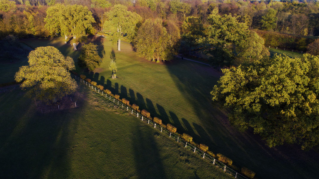 Luftaufnahme vom Barockpark in Jersbek, Stormarn von Jürgen Müller