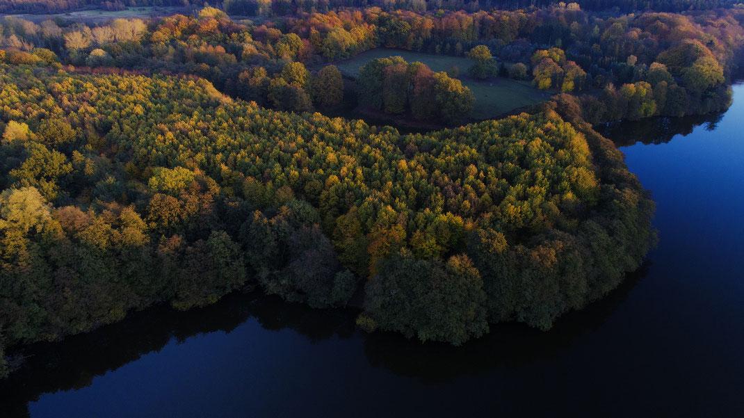 Foto vom Lütjensee im Herbst in Stormarn von Jürgen Müller