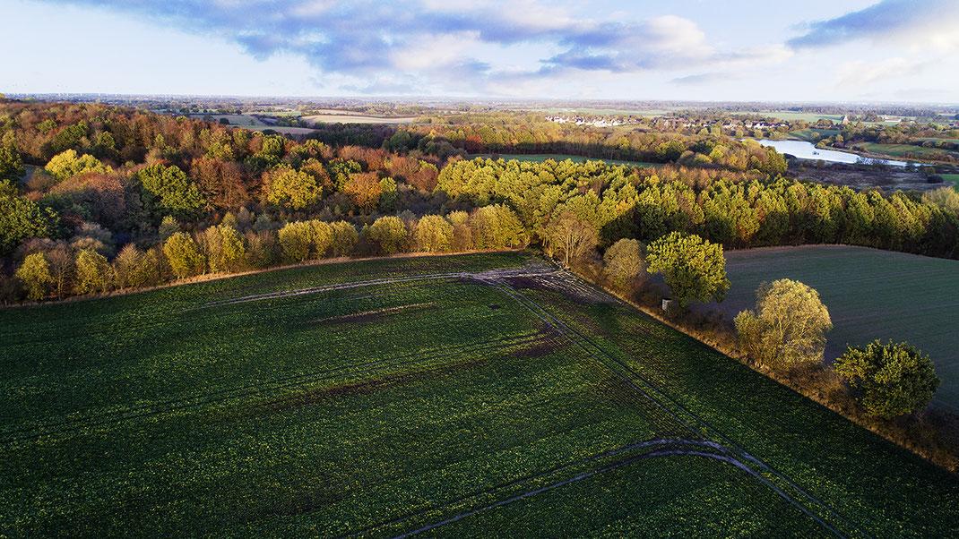 Landschaft im Herbst, zwischen Zarpen und Rehhorst, Stormarn, Schleswig-Holstein von Jürgen Müller