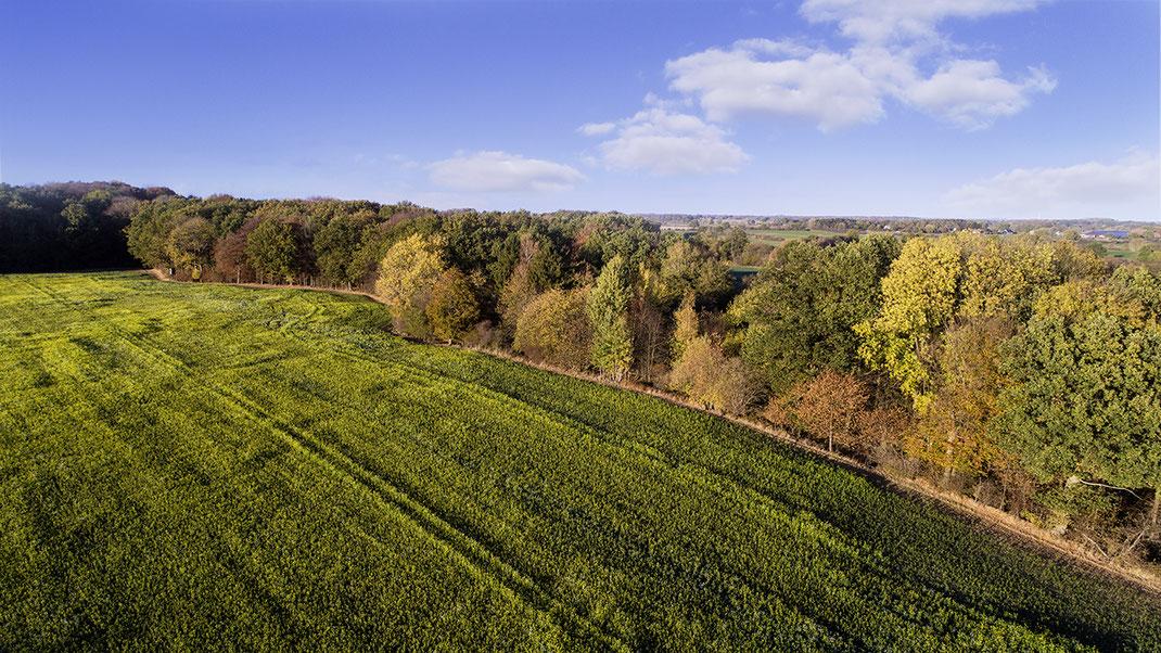 Luftaufnahme von Landschaft zwischen Reinfeld und Hamberge, Stormarn, Schleswig-Holstein von Jürgen Müller