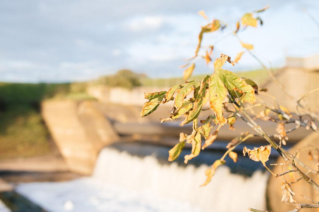 Mündungsbauwerk der Emscher. Emschermündung in den Rhein bei Dinslaken im Herbst.