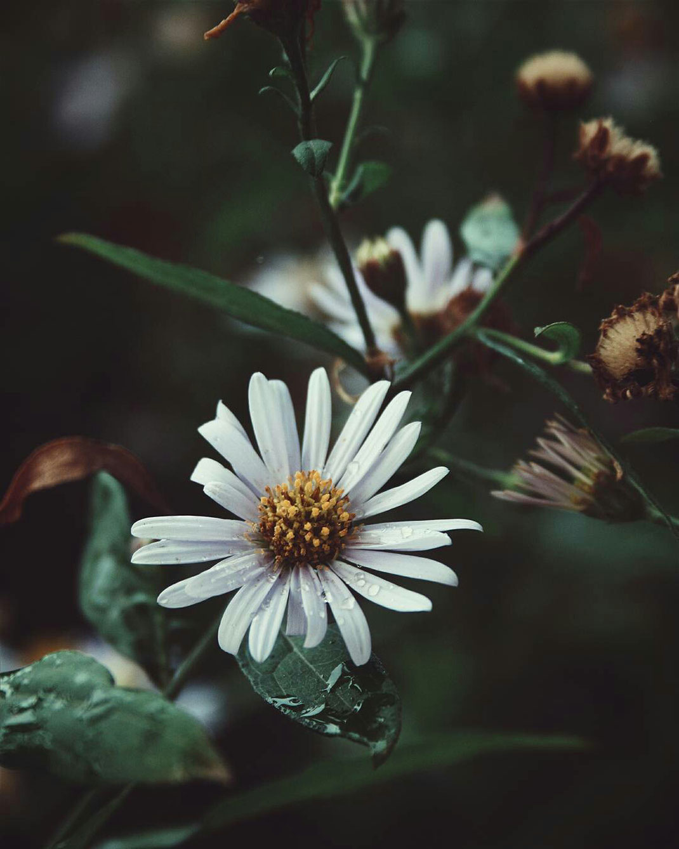 personalblog fotografie