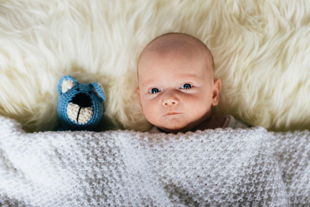 Baby mit Kuscheltier Newborn Fotografie