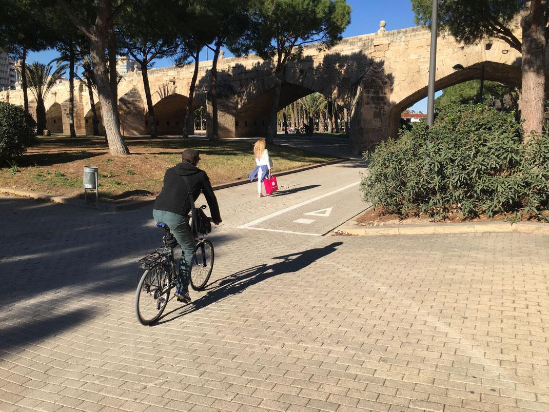 fietsen door de Turia in Valencia