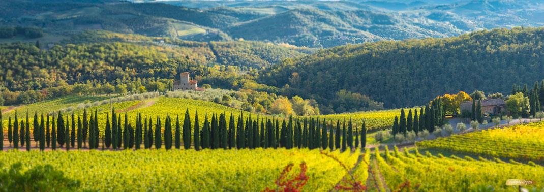 Toskana Landschaftsfotografie