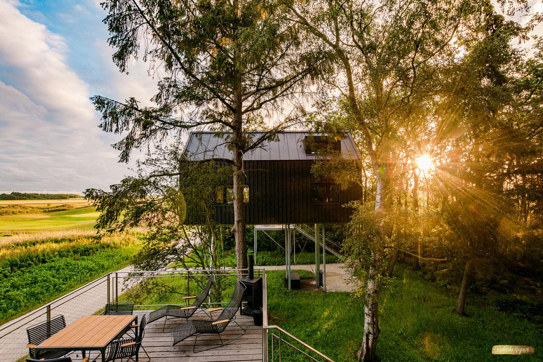 Architekturfotografie Baumhaus im Sonnenuntergang