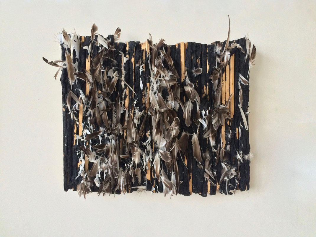 "Untitled (three ruffians killed beauty), April 2014, Wood, Tar & Feathers, 36"" x 24"""
