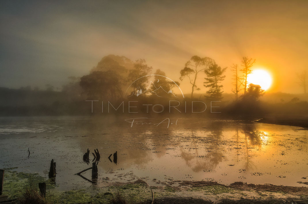 Mirror of Time | Spiegel der Zeit | North Island | New Zealand | Misty morning with the sun fighting through the fog on a little lake | Landschafts- & Naturfotografie | Landscape & Nature Photography