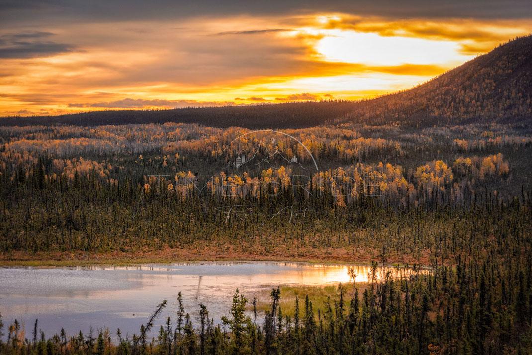 Rise of the Sun | Aufstieg der Sonne | Yukon Territory | Canada | Landschafts- & Naturfotografie | Landscape & Nature Photography