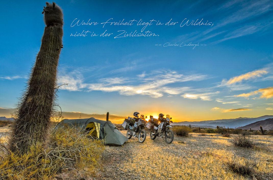 Wahre Freiheit liegt in der Wildnis, nicht in der Zivilisation | Charles Lindbergh | Fernweh & Inspiration | Wanderlust & Inspiration | Motorrad-Poster mit inkl. inspirierenden Zitat