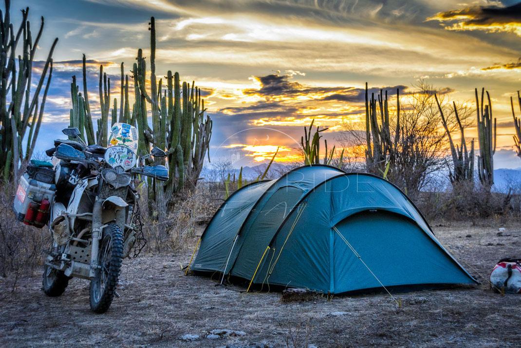 Cactus Country | Land der Kakteen | Desierto de Tatacoa | Columbia | Motorrad-Abenteuer-Fotografie | Motorcycle ADV Photography | Poster & Leinwände