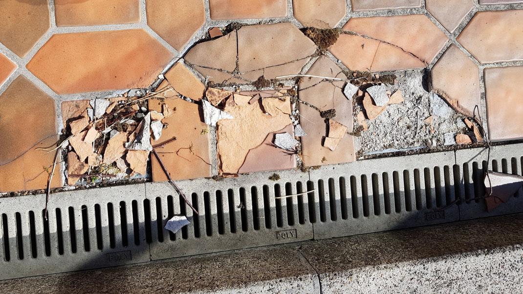Platten vom Frost zersprungen und Überzug verfroren