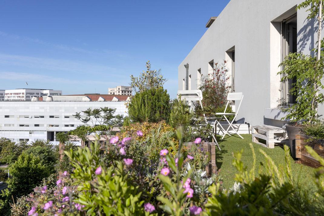 Création d'un rooftop à Marseille