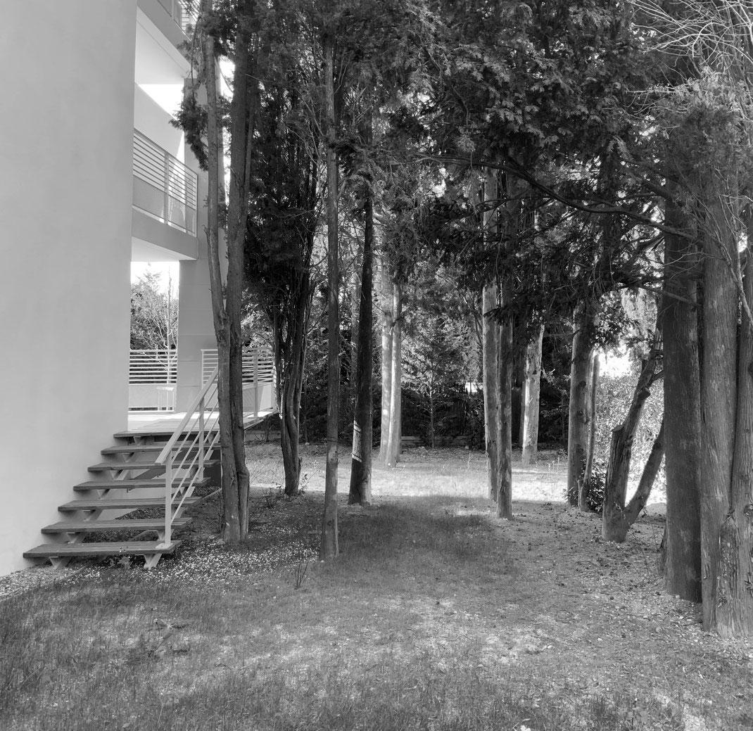 création d'un jardin contemporain au cap d'antibes
