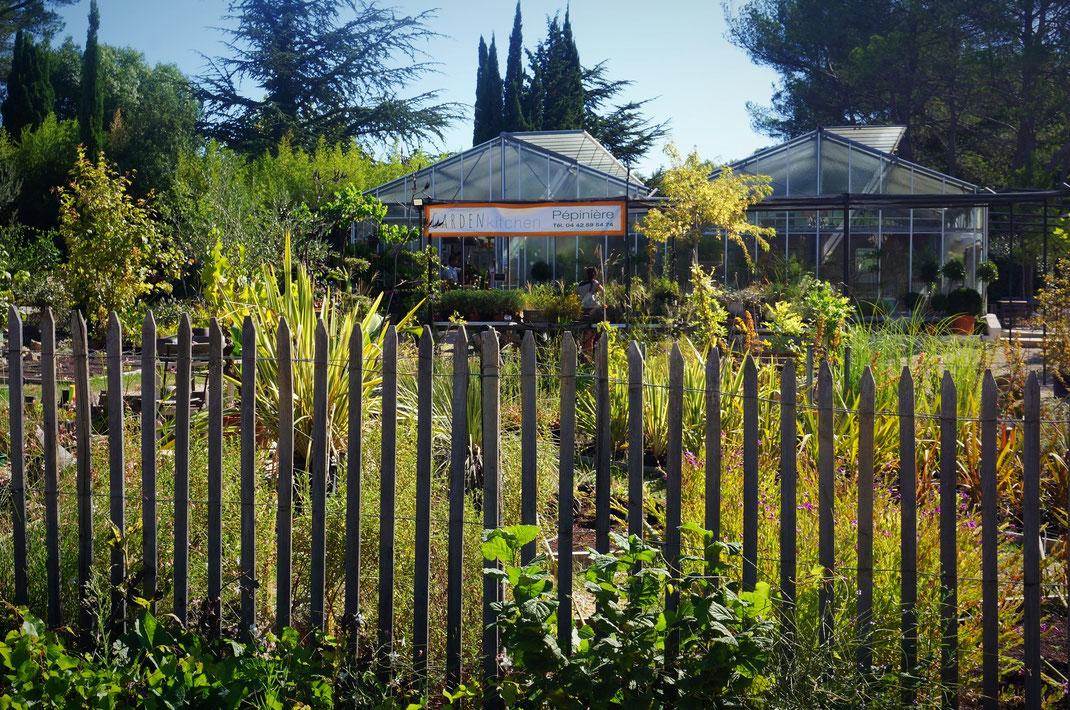 Vente de plantes ornementales, plantes méditerranéennes, plantes grimpantes, plantes de jardin sec, fruitiers, plantes aquatiques, potager près d'Aix-en-Provence