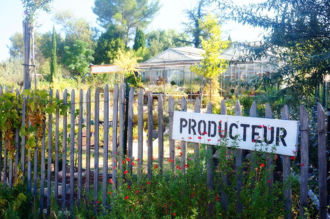 Pépinière en Provence près d'Aix-en-Provence. Producteur de plantes ornementales et conseils professionnels pour réaliser sois-même son jardin.