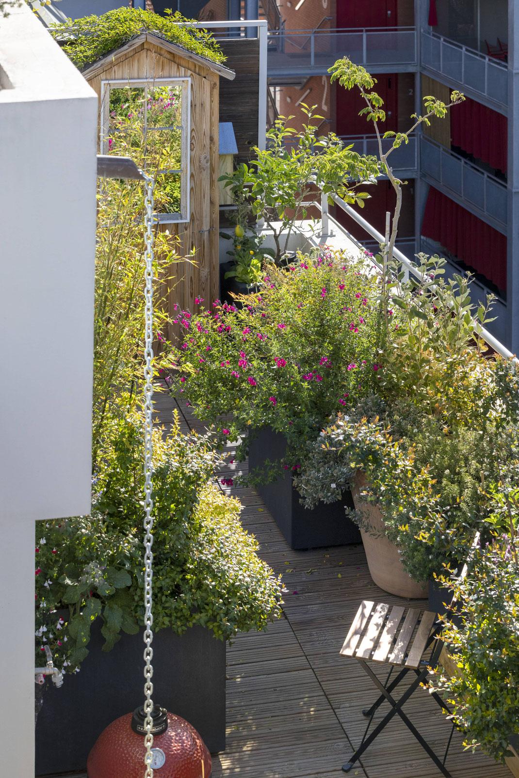 Création d'un rooftop à Marseille paysagiste