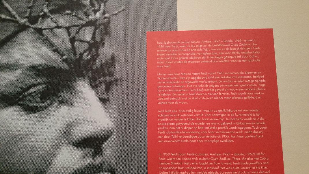 Een fragment van een muurposter tijdens de tentoonstelling in het Cobra, met daarop het gezicht van Ferdi Jansen, met een smeedijzeren kap op haar hoofd. Op een rood vlak tekst over hoe haar leven verliep.