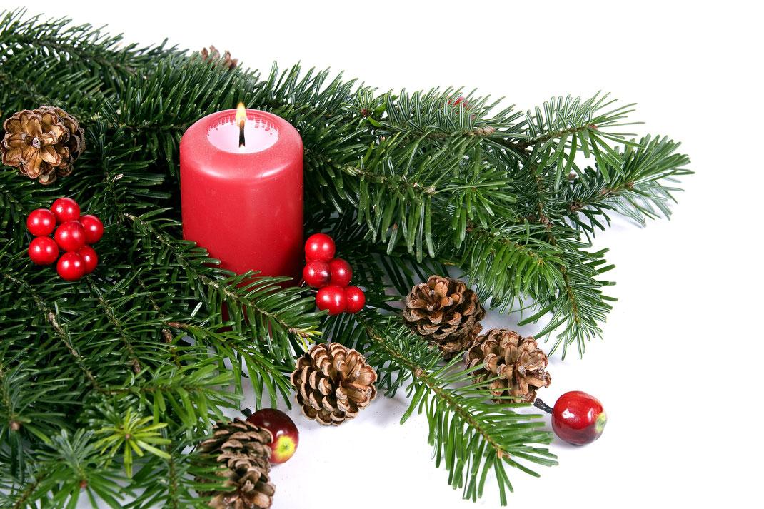tannenbaum hamburg lieferservice weihnachtsbaumschlagen weihnachtsbaum kaufen weihnachtsbaum. Black Bedroom Furniture Sets. Home Design Ideas