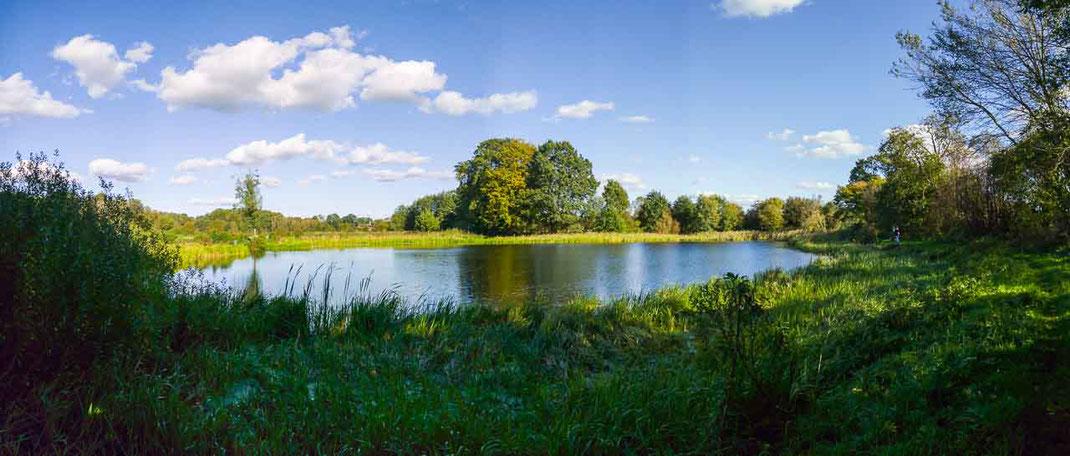 Panorama Wasser Teich Schleswig-Holstein