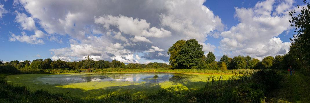 Herbst an einem Teich in Schleswig-Holstein mit Wasser, Wolken und Bäumen