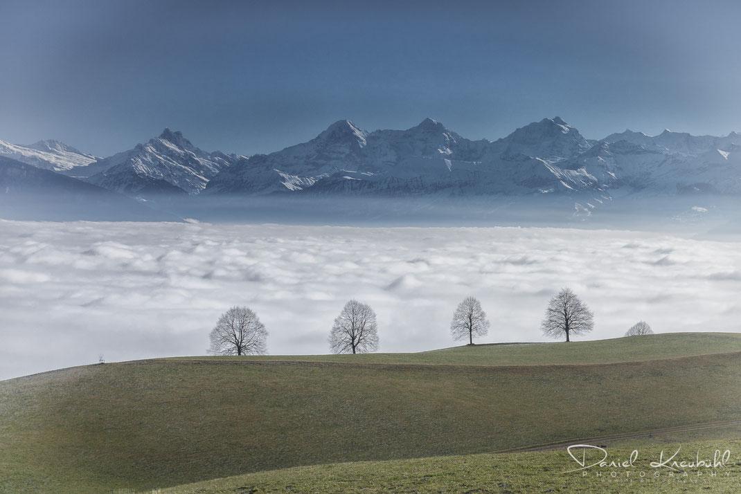 Nebelmeer über dem Thunersee, Berner Oberland, Bern, Schweiz, www.dk-photography.ch, Photographer/Fotograf: Daniel Kneubühl