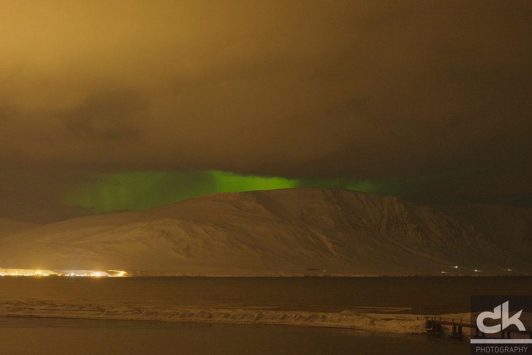 Aurora Borealis bei Saudarkrokur (Island)