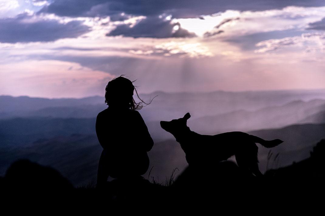 Silhouetten von Frau und Hund vor atemberaubender Bergkulisse. Photo by Patrick Hendry on Unsplash
