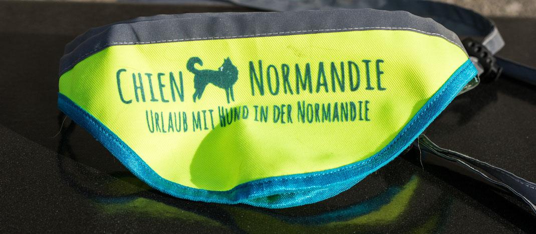 Ein gelbes Halstuch mit chienNormandie-Beflockung