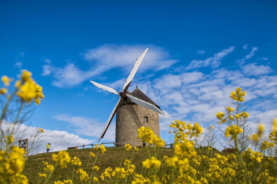 Die Moulin de Moidrey erhebt sich circa 4 Kilometer südlich vom Mont-Saint-Michel in der Normandie.