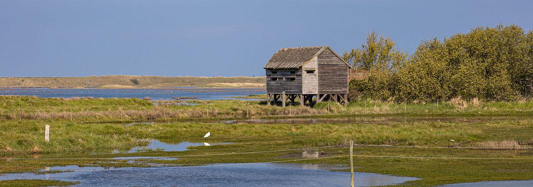 Eine Holzhütte steht im Havre de Geffosses in der Manche, Normandie. Ein Silberreiherreiher sitzt im Wasser