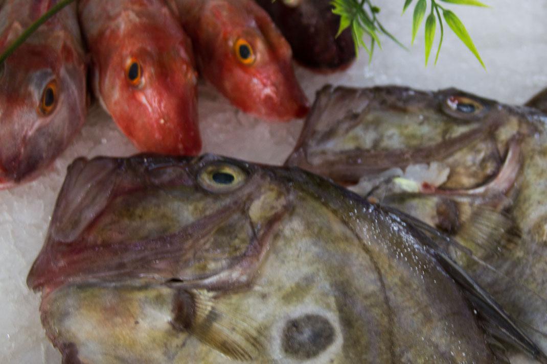 Fische auf Eis in einem Marktwagen in der Normandie.